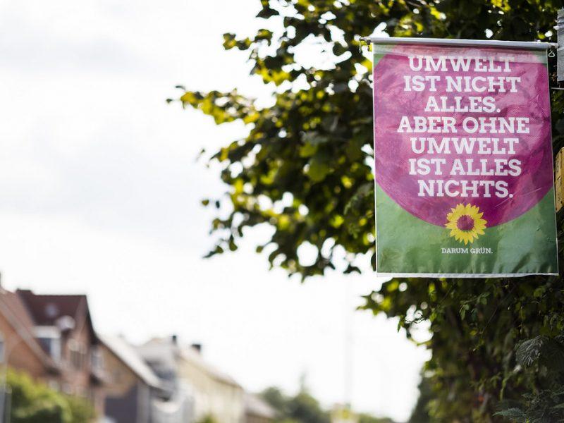 Die Gruenen - Πράσινοι, Γερμανία